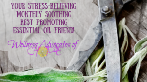 Essential Oil Spotlight: Clary Sage