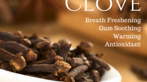 Essential Oil Spotlight: Clove